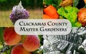 ccmg 4 seasons plants w clack co mg lettering